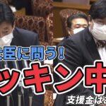 7/8 議院運営委員会〜ロッキン中止について西村大臣に問う!〜